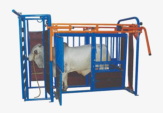 Bretes ganadería